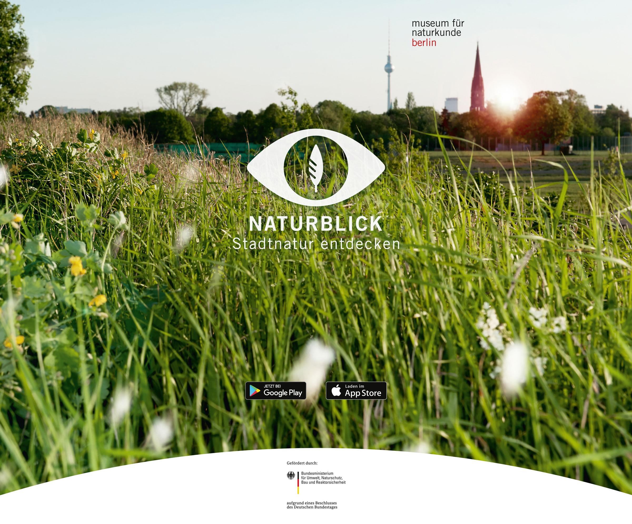 Naturblick_Display