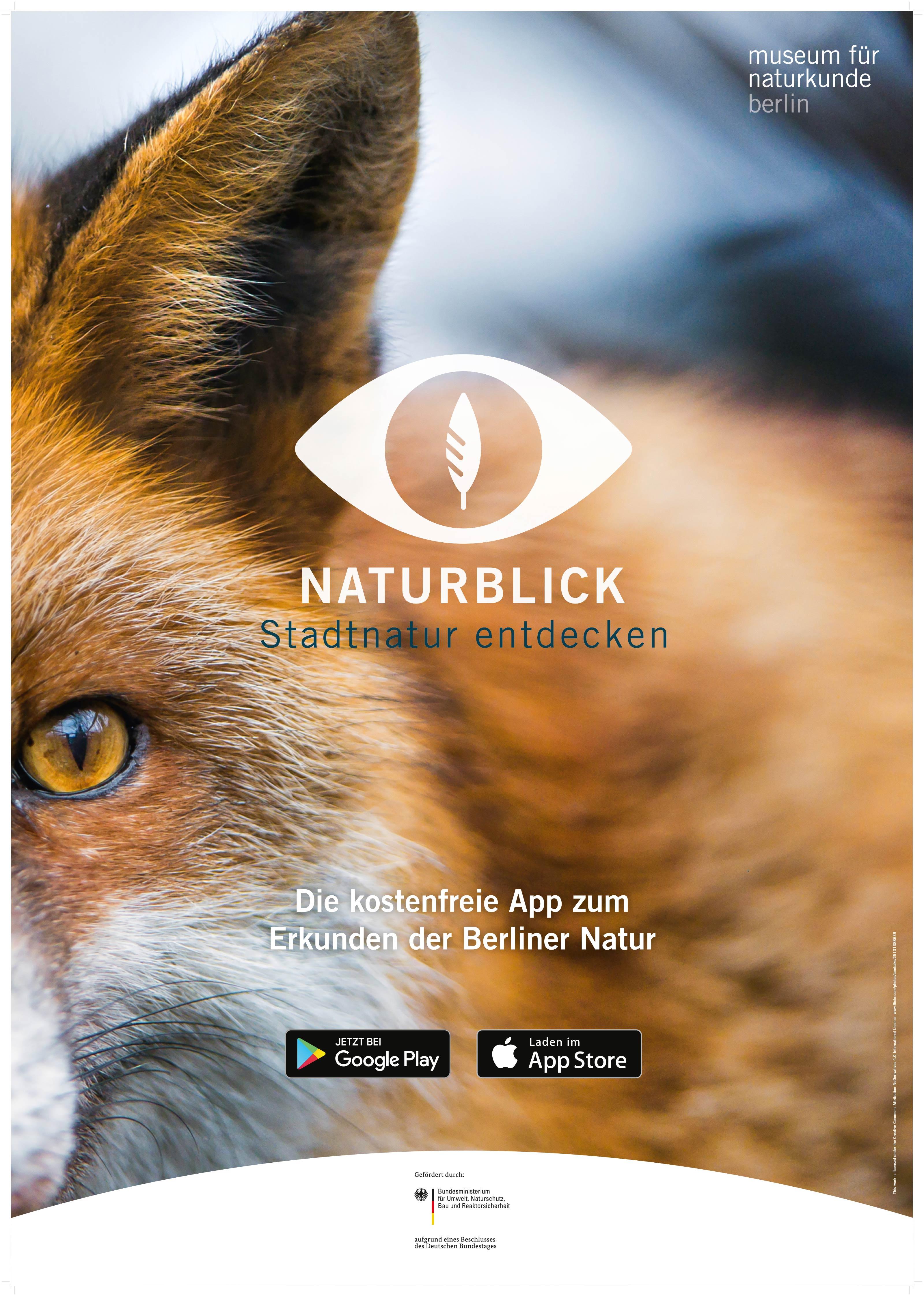 Naturblick_Poster